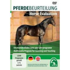 Pferdebeurteilung Horse Evaluation